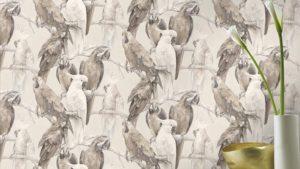 Papagei Tapeten