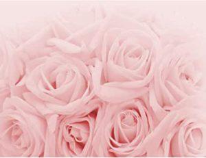 Tapeten rosa