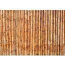 Fototapeten Bambus